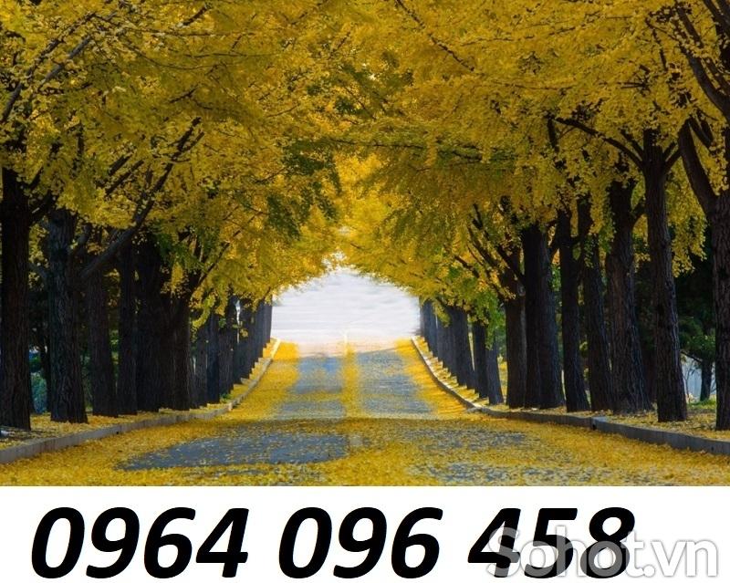 Tranh gạch 3d phong cảnh mùa thu - KGDS2