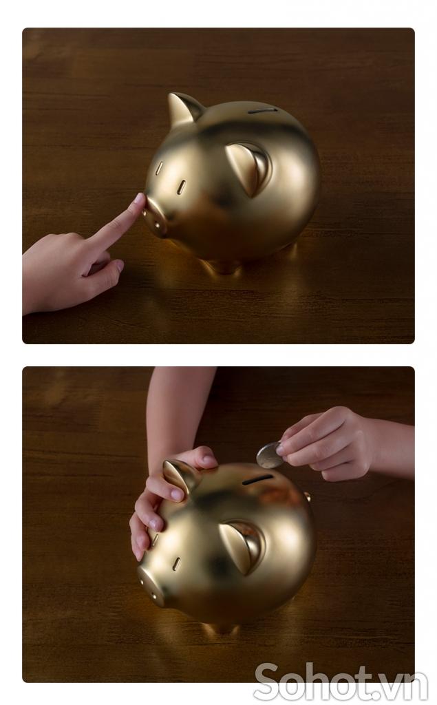 Heo Vàng May Mắn bằng đồng