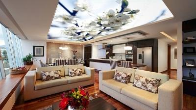 Tuyệt chiêu bài trí phong thủy cho phòng khách HÚT TÀI - HÚT LỘC